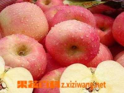 晚上可以吃苹果吗 睡前吃苹果好不好
